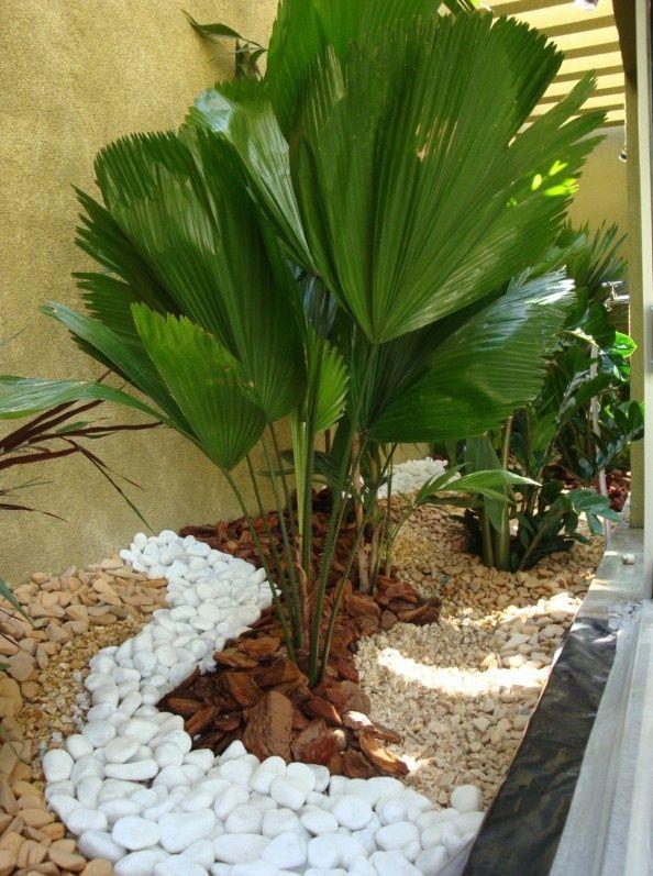 Ideas Para Jardines Interiores Jardines Jardin Con Piedras