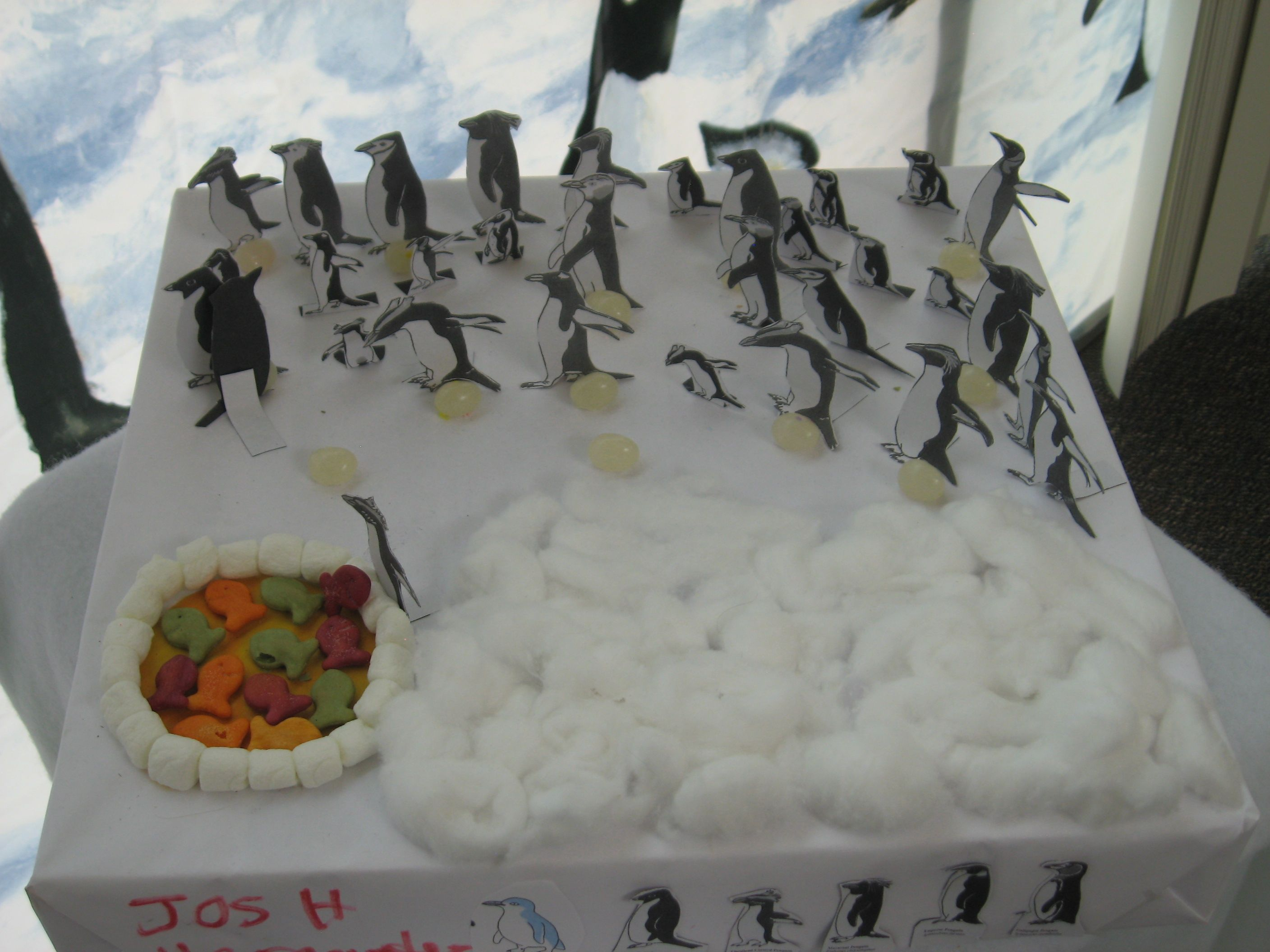 2nd Grade Penguin Projects