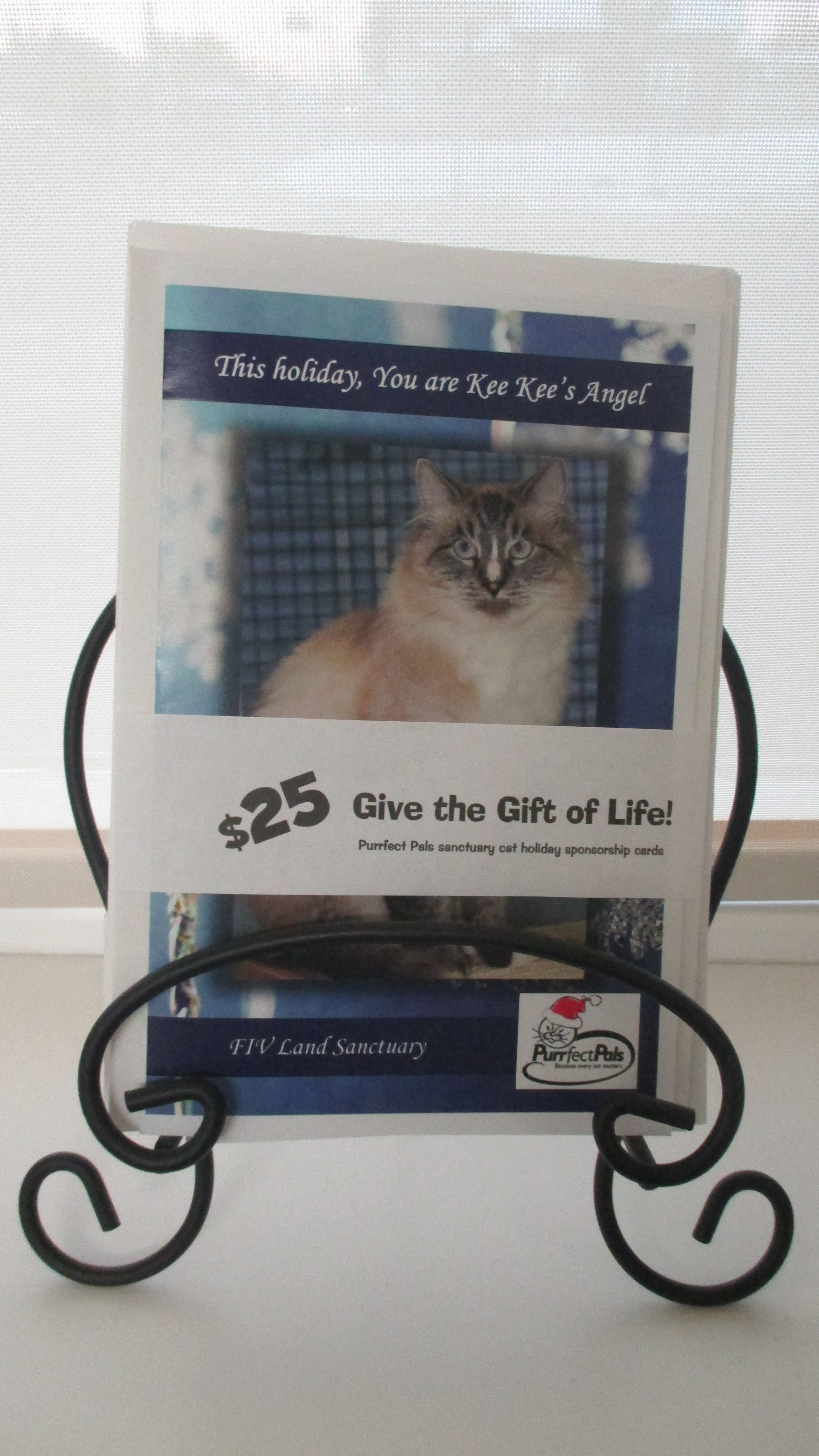 Give the gift of life this year! it is common for people to donate for a cause for the holidays, instead of giving their loved one a physical present. Purrfect pals is offering Christmas cards , with an image of a pet on them, whose life in the shelter you would be sponsoring. Available in our lobby at Broadway Animal Hospital or at : http://purrfectpals.org/purrfect-pals-merchandise/