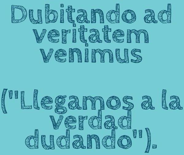 Quotes / Citas.