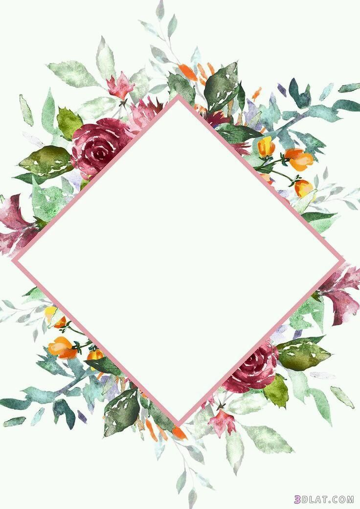 also floral frame  wallpapers rh br pinterest