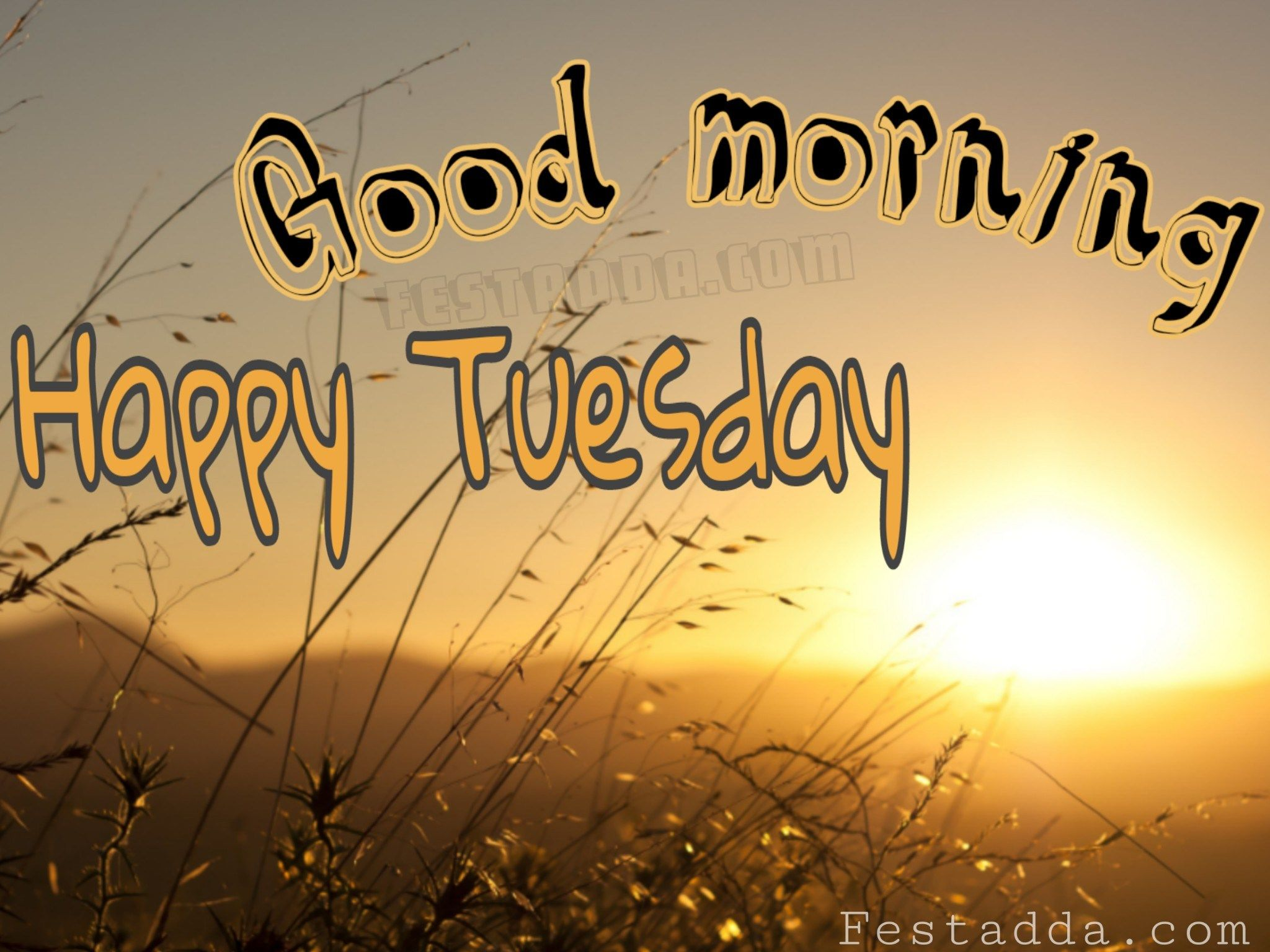 Happy Tuesday Gif Happy Tuesday Images Good Morning Tuesday Images Tuesday Images