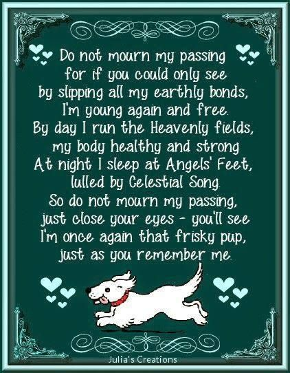 So precious  | Dogs | Dogs, Dog poems, Pets
