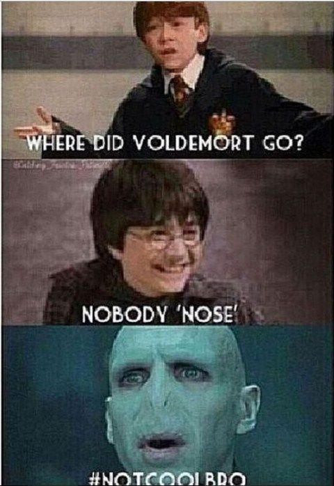 Image By Sophie Levens On Harry Potter Harry Potter Memes Hilarious Harry Potter Jokes Harry Potter Puns
