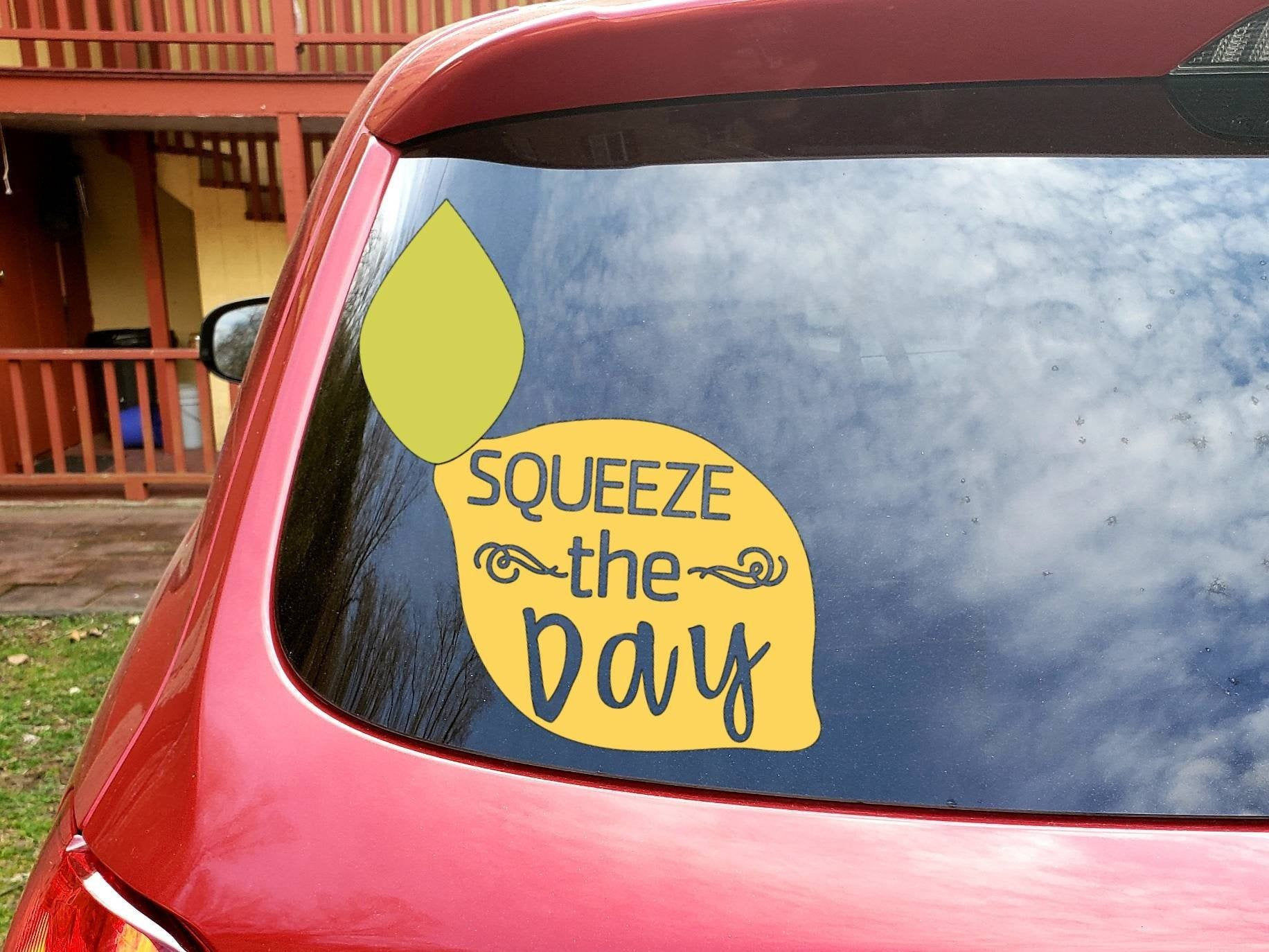 Squeeze The Day Lemon Decal Tumbler Decals Vinyls Tumbler Decal Bumper Stickers [ jpg ]