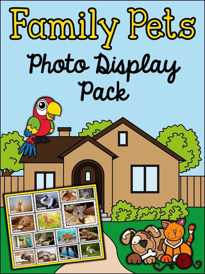 Pets Photo Posters With Vocabulary Animals Home And Family Englisch