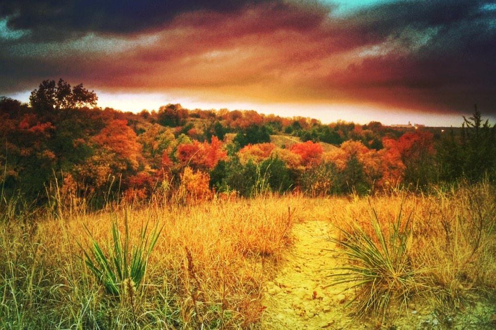 Fort Worth Autumn colors! #txwx   @NinjaKP007 @jstar79 @LoneStarStorms @TornadoTitans @VisitFortWorth