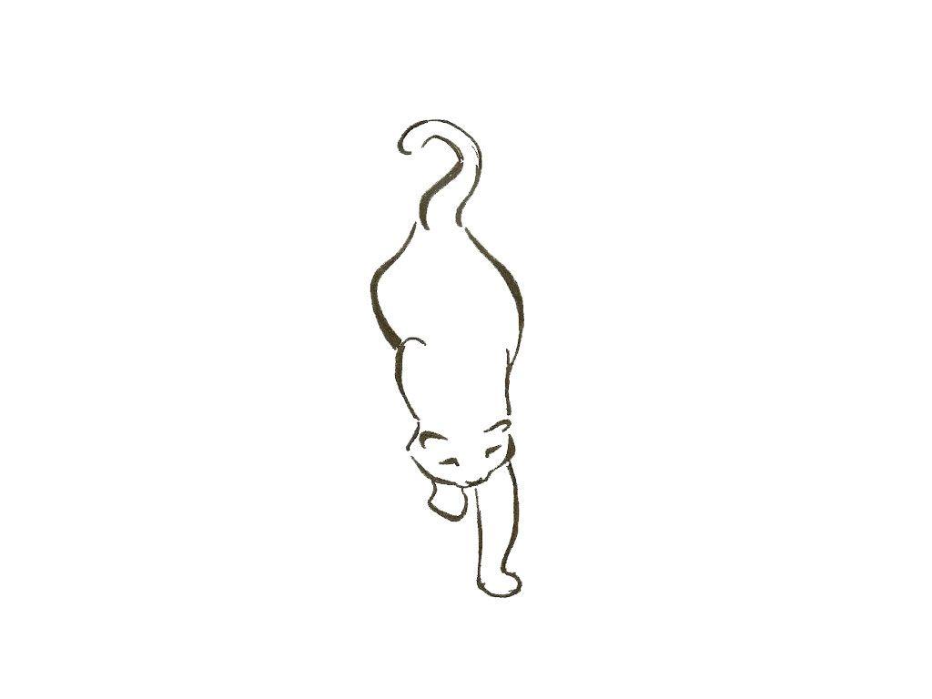 best 25 fat cat tattoo ideas on pinterest cat tattoos cat
