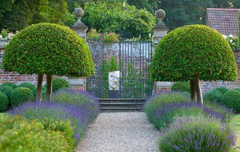 Garden Ideas, Landscaping ideas, pathway, walkway, Lavender path ...