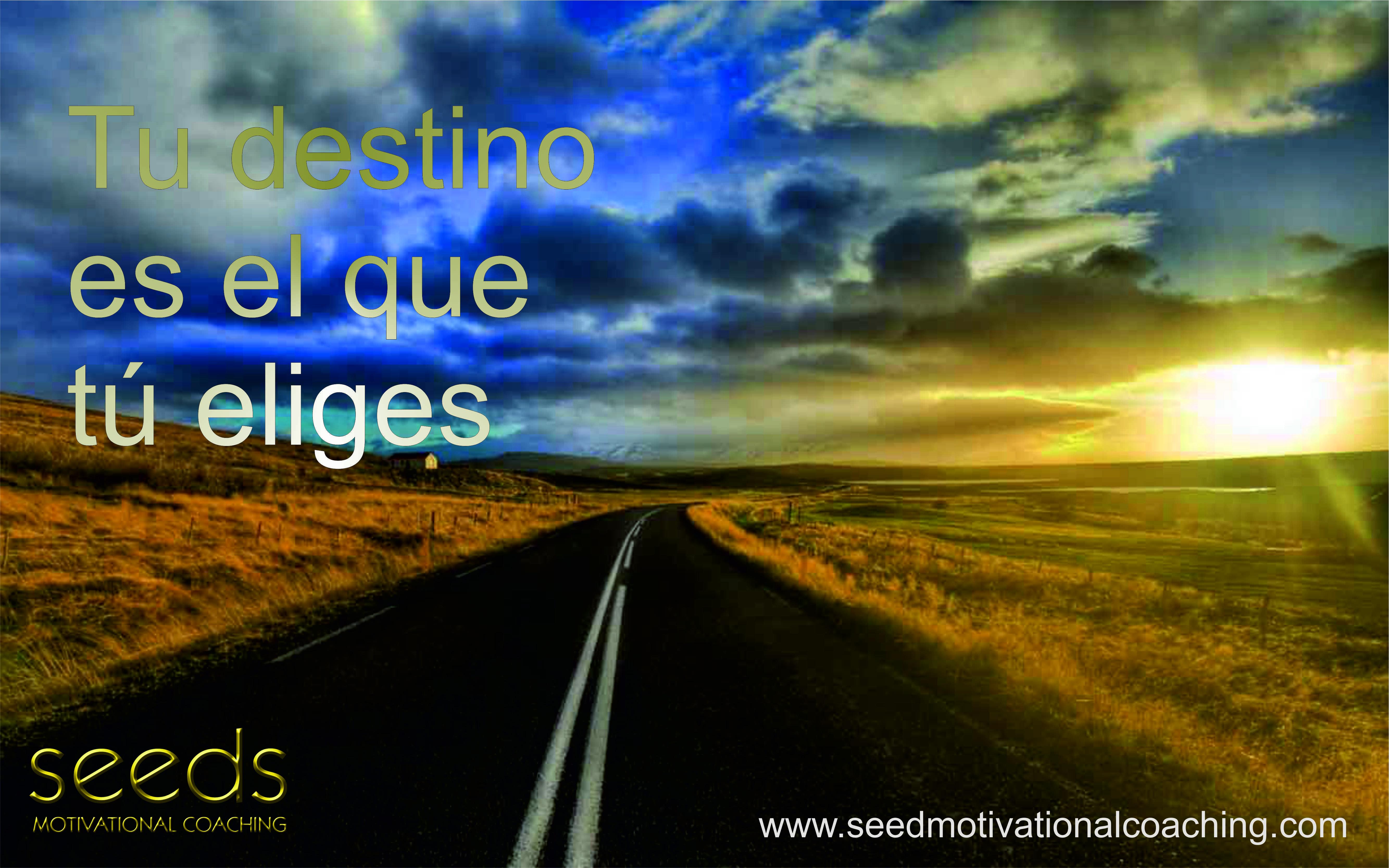 Elige tu propio camino elige tu destino