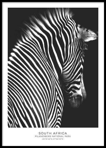 Black and white posters prints desenio com