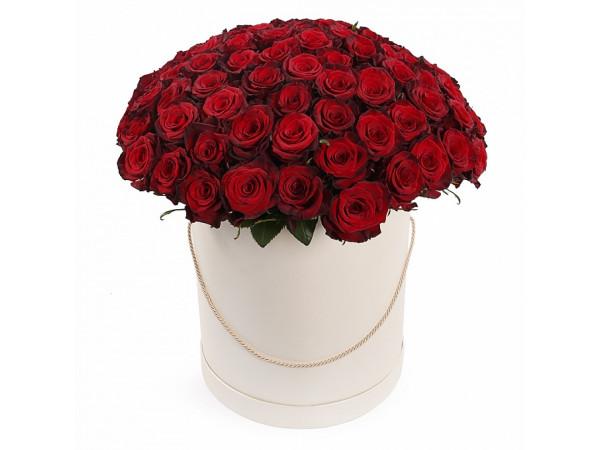 Купить 101 роза в шляпной коробке по цене 10400 рублей с доставкой по Москве | Магия роз 24