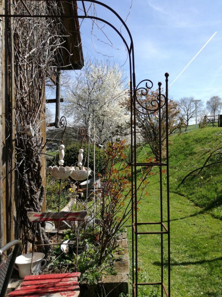 Auch Bei Wenig Platz Gibt Es Ein Losung Der Halbe Rosenbogen Gartendekoration Rosenbogen Rankhilfe