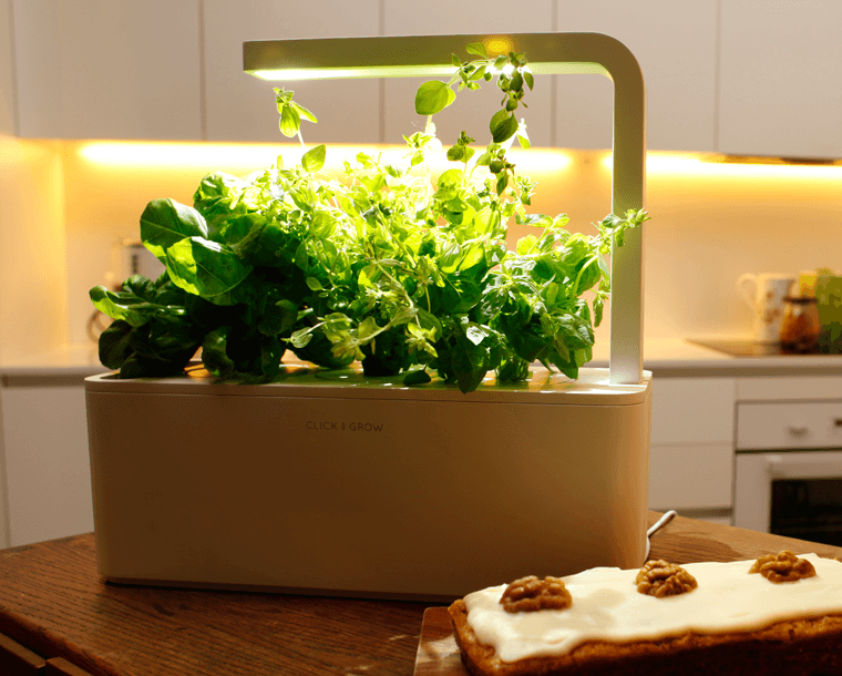 The Smart Garden 3 Smart Garden Aquaponics Herbs Indoors