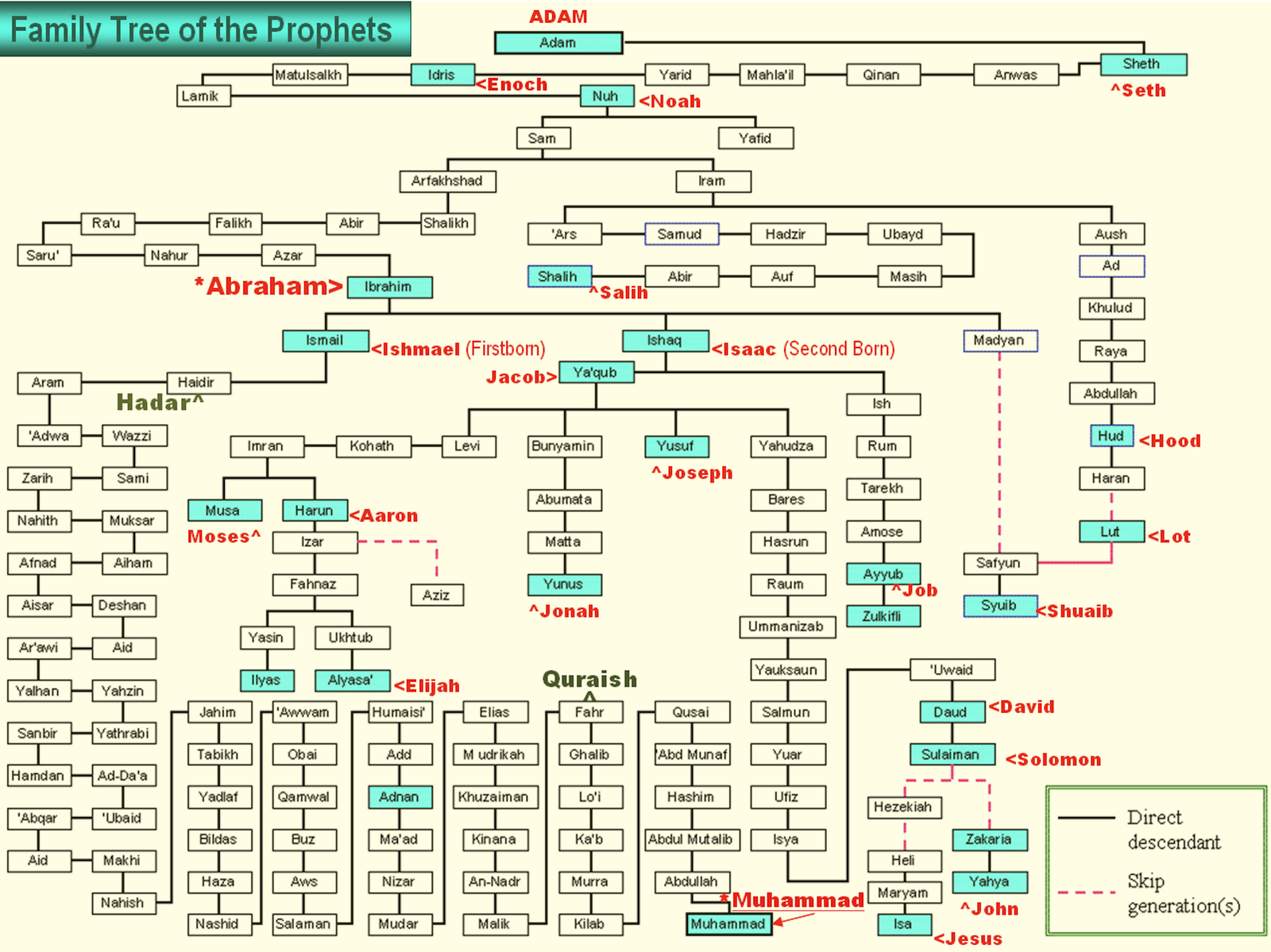 Picture of family tree from adam to muhammad english prophet adam