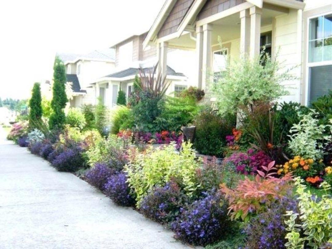 Awesome Top 30 Impressive Sun Perennials Front Yard Ideas For Wonderful Garden Https