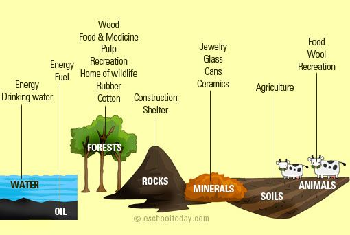 What Are Natural Resources Conservation Of Natural Resources Natural Resources Types Of Natural Resources