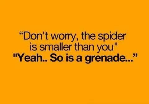 This is a quote example of verbal irony/sarcasm. Because a spider is ...