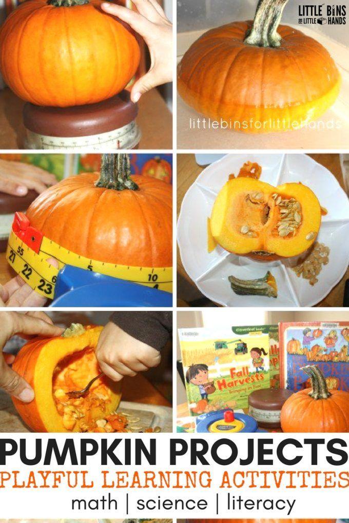 42+ Pumpkin projects for preschoolers info