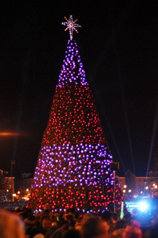 holiday dazzle newport news va holly dazzle christmas tree newport news va