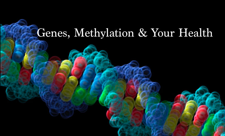 Genes, Methylation and Your Health | Suzy's Health Blog | Health