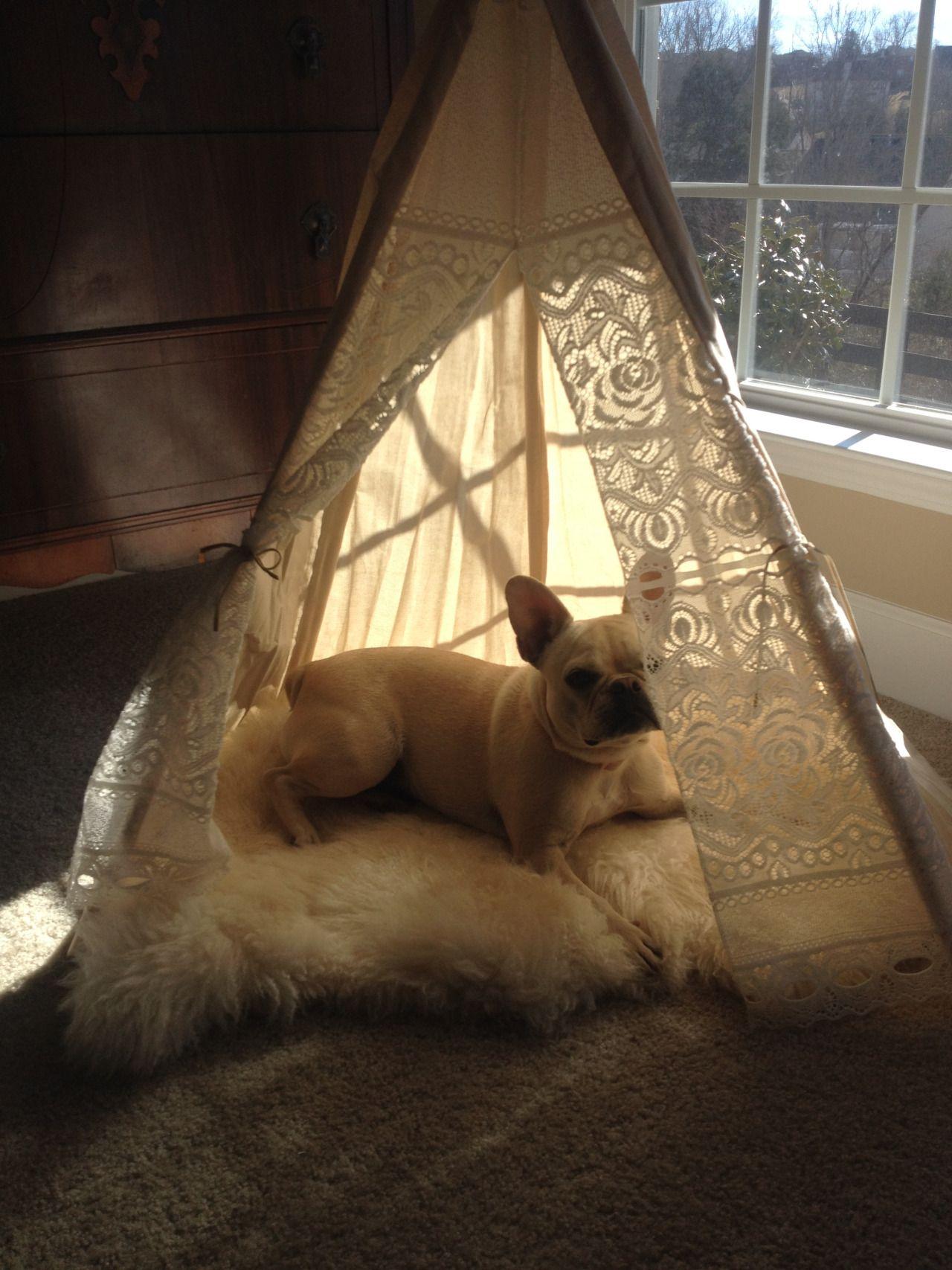 LuLu is 1 and lives in Nashville. She enjoys enchanted