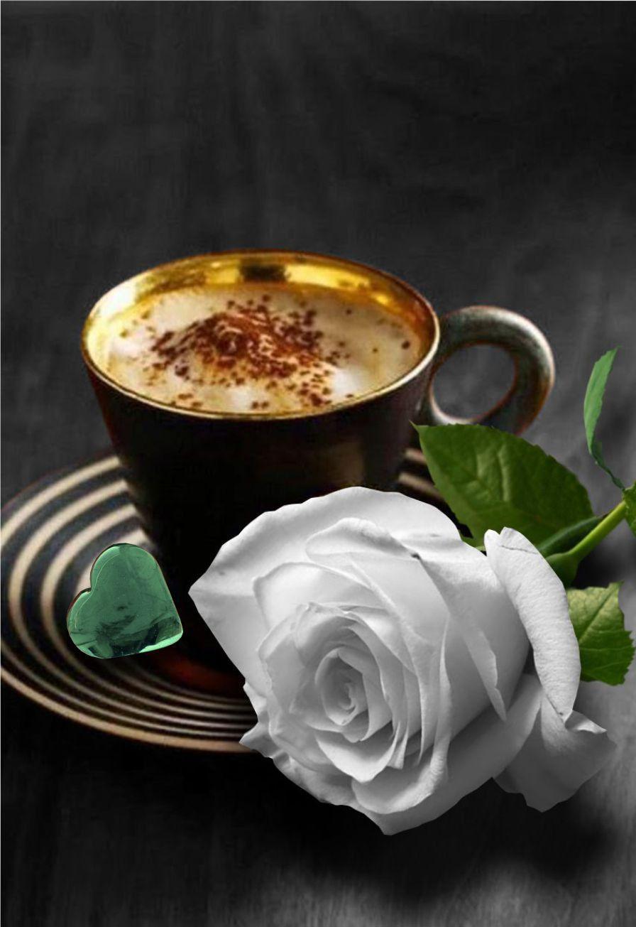 утренний кофе гифы даже армии служил