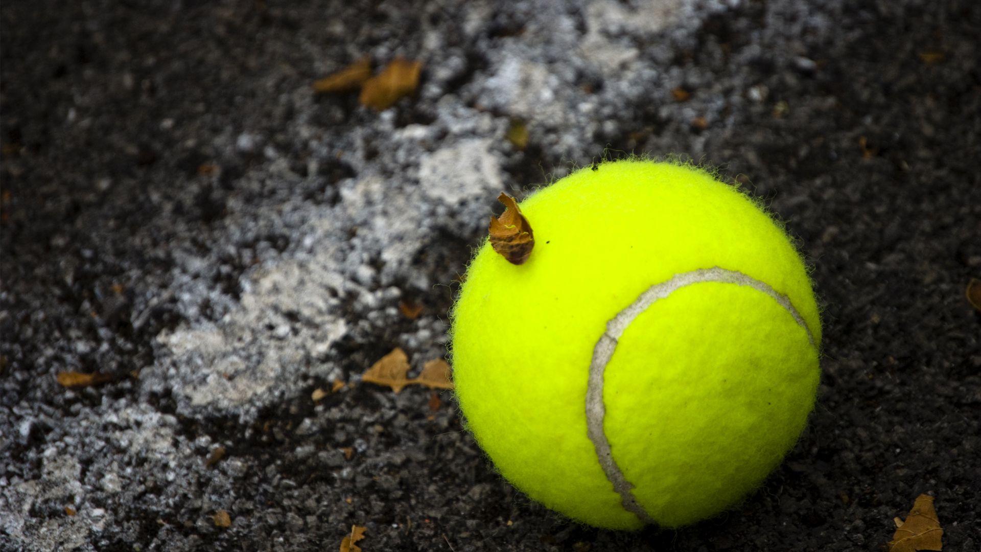 Pin By Sardar Zubair On Zukunftige Projekte Tennis Wallpaper Tennis Ball Tennis Lessons