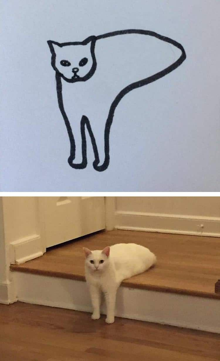 15 Minimalist Cat Drawings That Are Hilarious But Totally Accurate Cat Drawing Cat Art Simple Cat Drawing