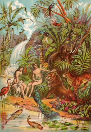The Garden Of Eden Image 1 Adam And Eve Christian Prints Bible Illustrations
