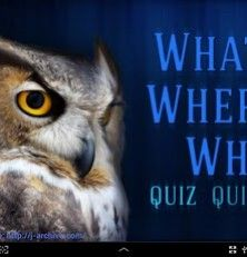 Quiz - Do you love trivia? Looking for an