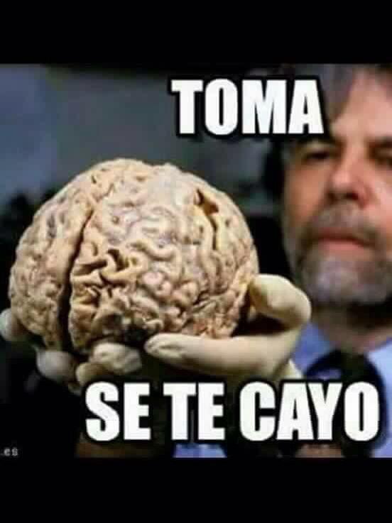 Mejores 49 Imagenes Chistosas La Seleccion Mas Graciosa De La Web Mejores Imagenes New Memes Funny Memes Mexican Funny Memes