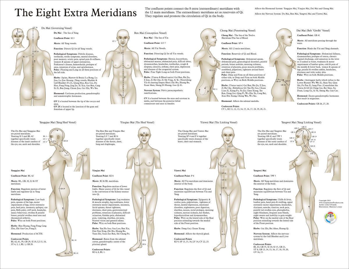 Eight Extra Acupuncture Meridians Chart Akupunktur Acupuncture