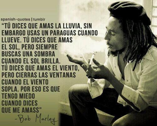 #Bob #filosofía