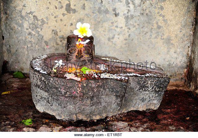 Shivalingam at ardhnari nateshwar temple ; Velapur ; Solapur ; Maharashtra ; India - Stock Image