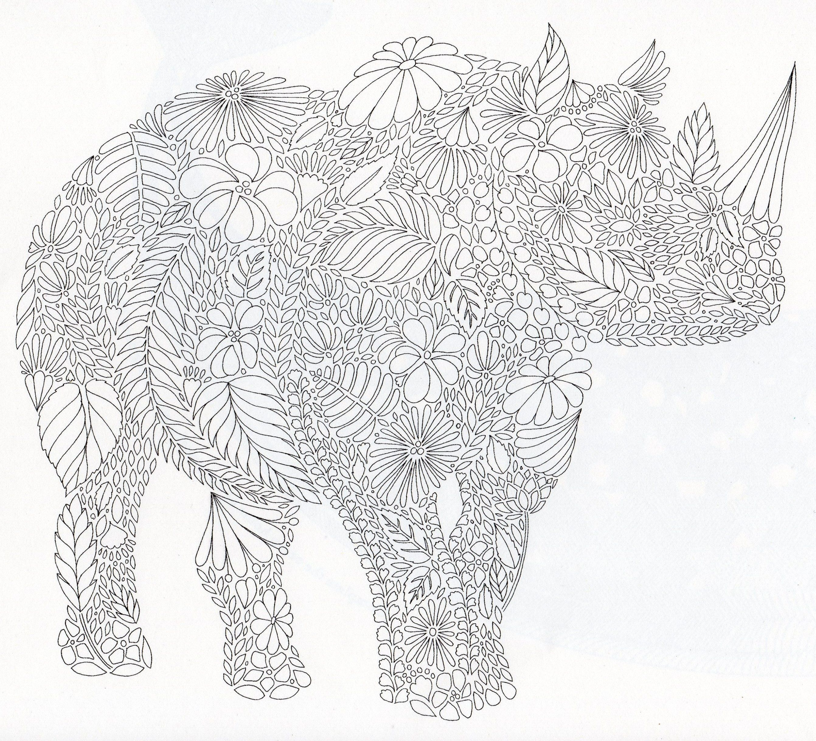 Millie Marotta's Animal Kingdom Rhinoceroses