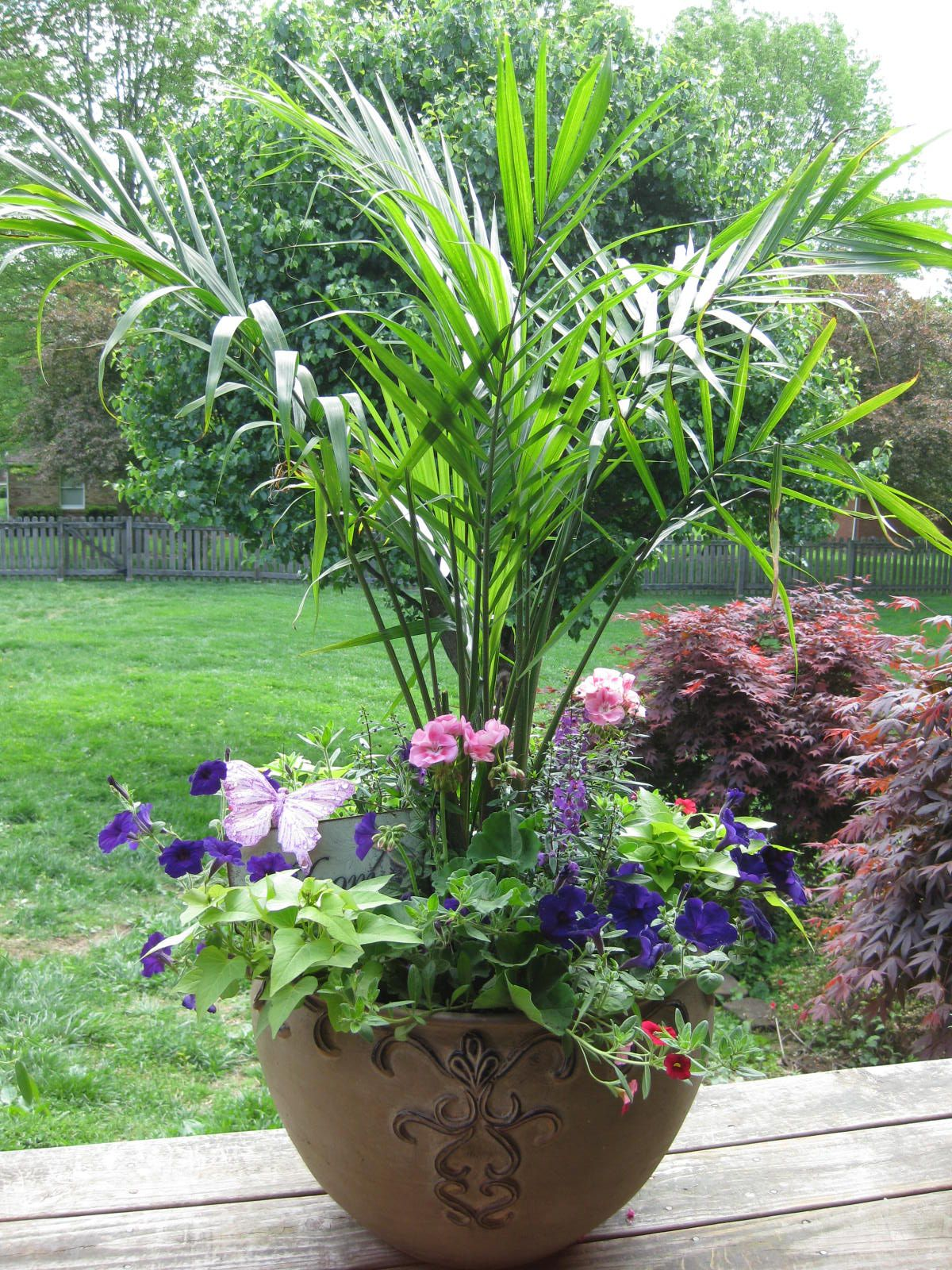 Big Flower Planters Love The Palm Large Container Garden Container Gardens