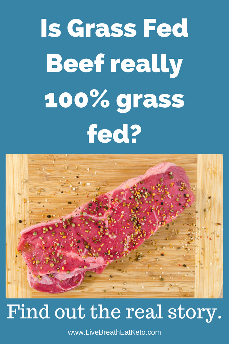 Grass Fed Beef Vs Grass Finished Beef Grass Fed Beef Fed Beef
