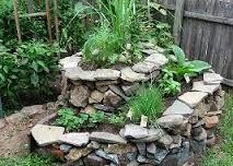 Resultado de imagem para jardinagem dicas simples