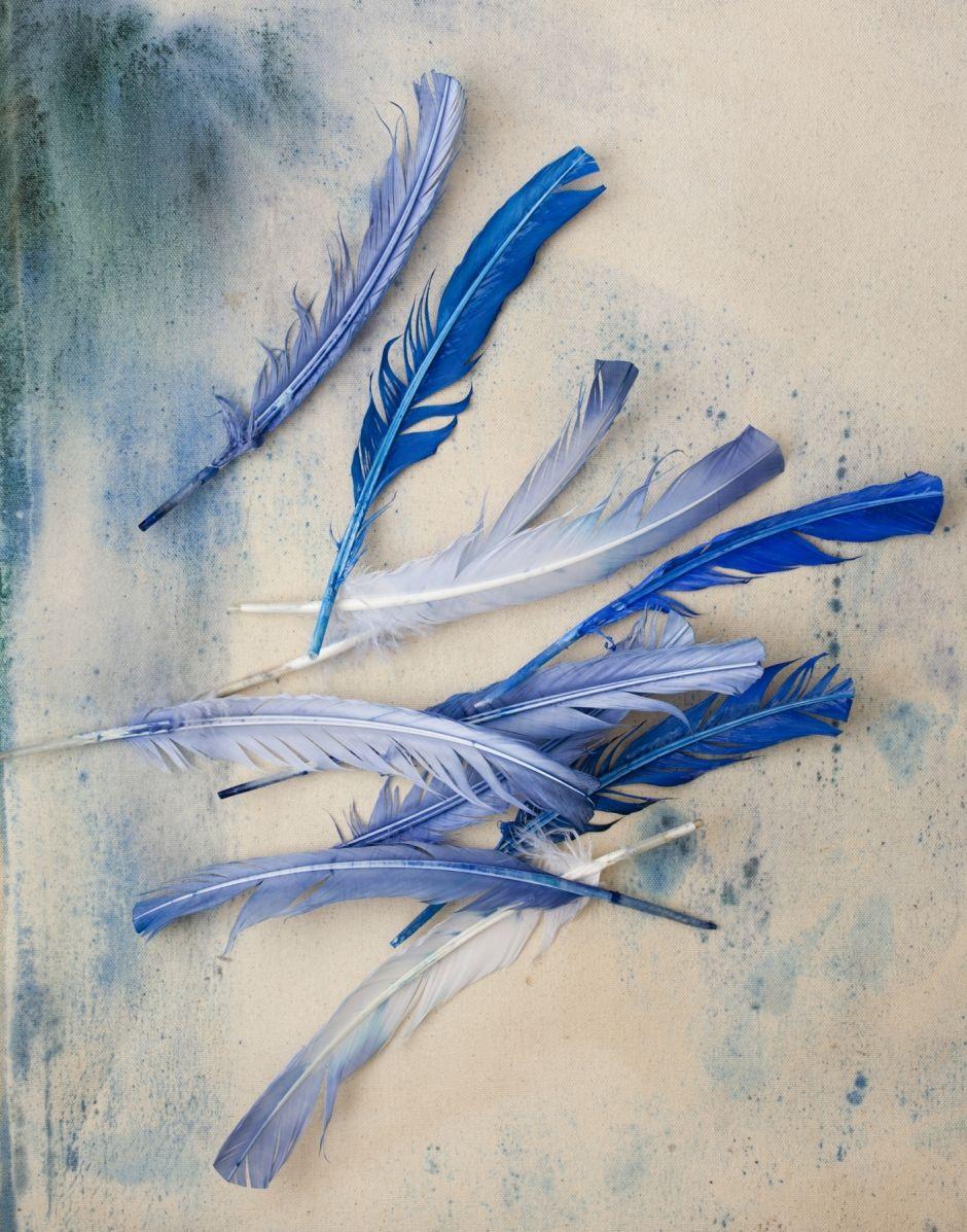 Blue | Blau | Bleu | Azul | Blå | Azul | 蓝色 | Color | Form | Texture | Tear Sheets | Helen Quinn