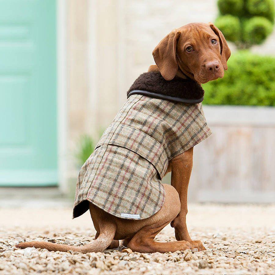 Large Brown Herringbone Dog Coat  Brown Dog Coat  Large Dog Coat  Tweed Dog Coat  Dog Coat  Waterproof Dog Coat  Luxury Dog Coat