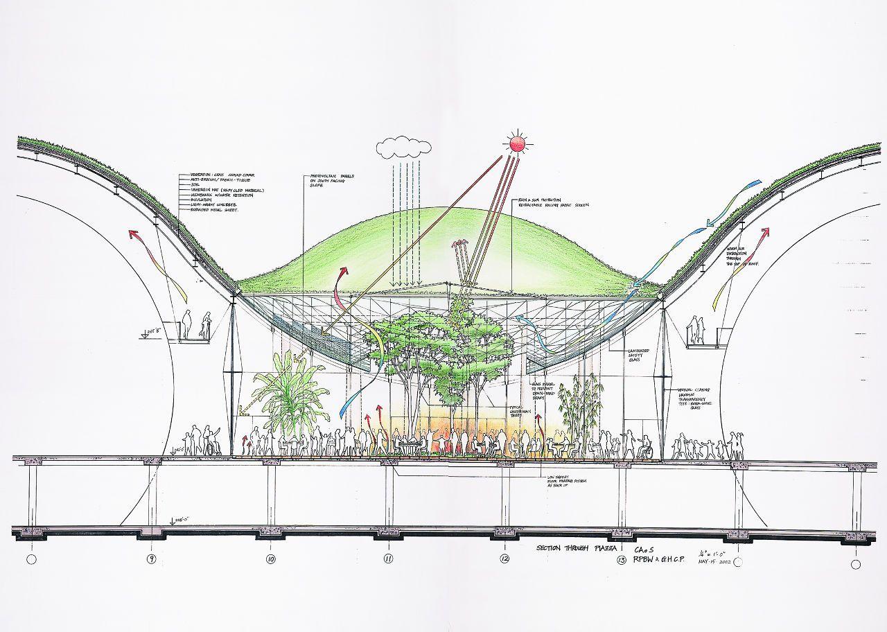 California Academy Of Sciences Credit Renzo Piano