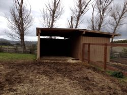 Pin By Proequinegrooms On Pro Equine Grooms Run In Shed Horse