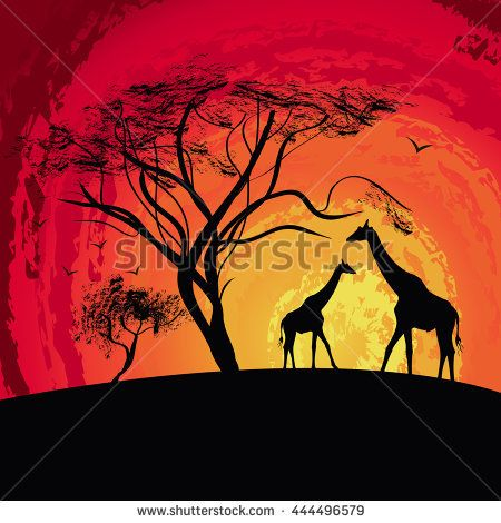 silhouette of a giraffe , sunset in Africa , landscape , vector