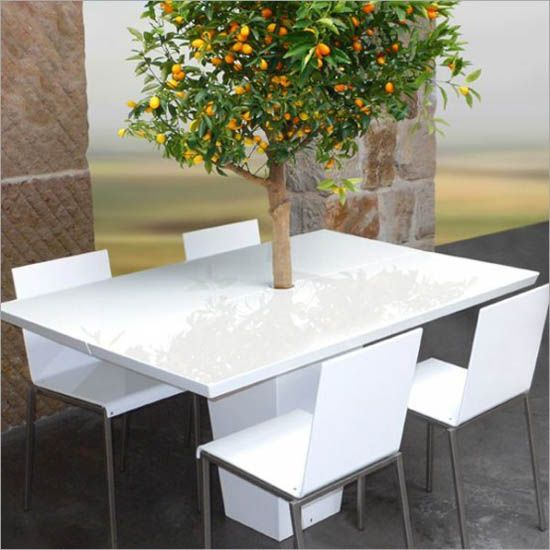 modern outdoor dining furniture. Dining Tables With Integrated Small Trees: This Contemporary Table From French Company Mezza Style Comes Tree. Modern Outdoor Furniture