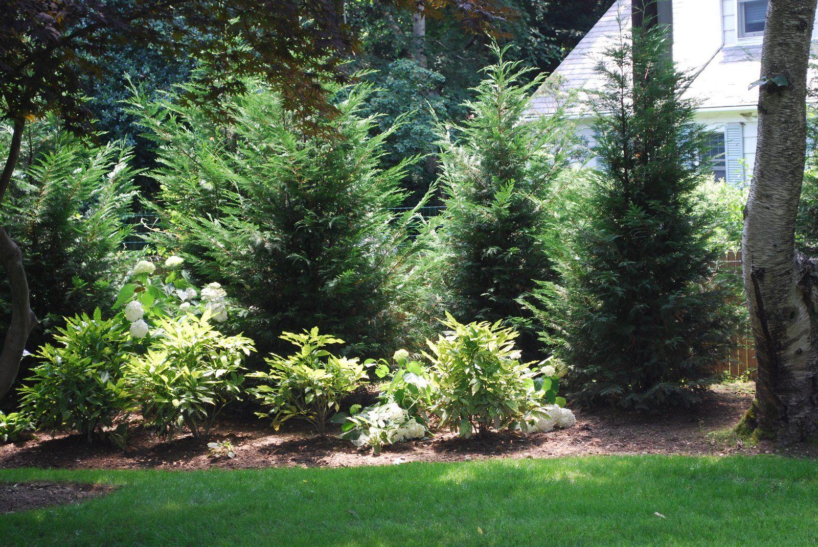 royal lawn landscaping leyland