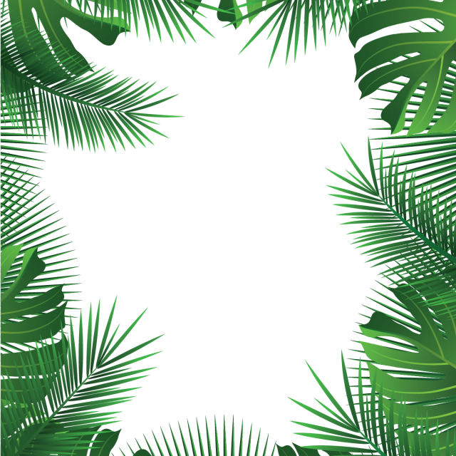 Tropical Leaves Frame Palm Summer Leaves Tropical Vector Png And Vector With Transparent Background For Free Download Tropical Frames Tropical Leaves Leaf Border