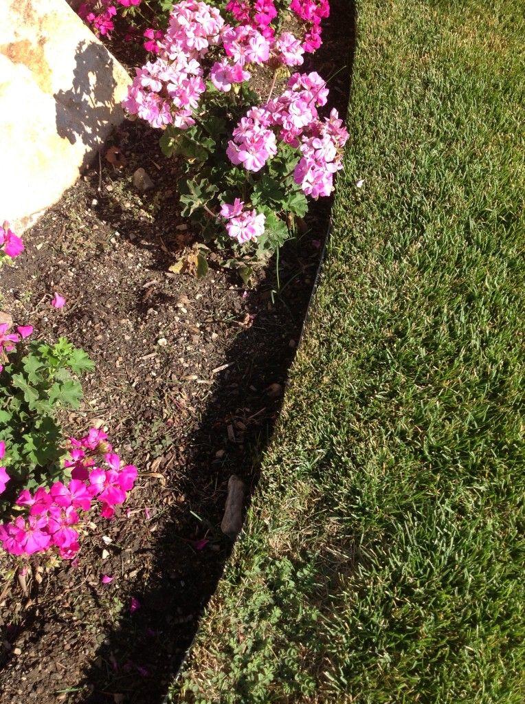 Garden Curbing Vs Trench Edging Landscape Edging Garden Organic Gardening Tips