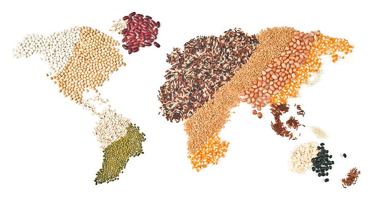 3 things we learned about food safety across 3 continents world health day 2015 ific foundation your nutrition and food safety resource