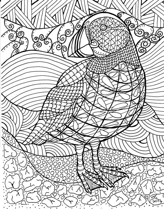Puffin Zentangle Coloring Page By Inspirationbyvicki Bird